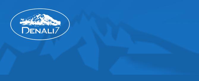 Denali Technology Solutions logo