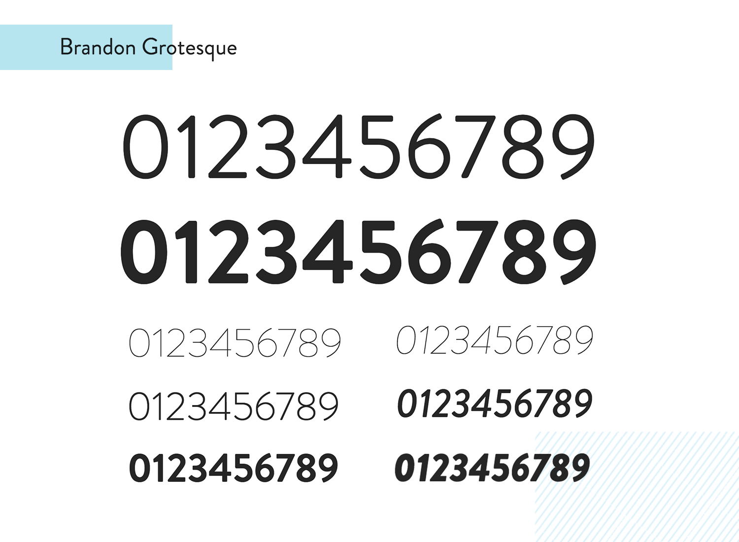 brandon grotesque as paid number font