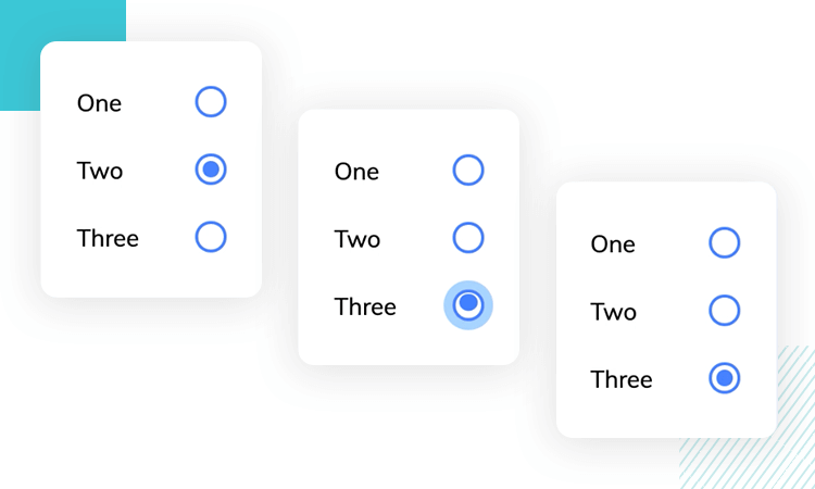 animated radio button example