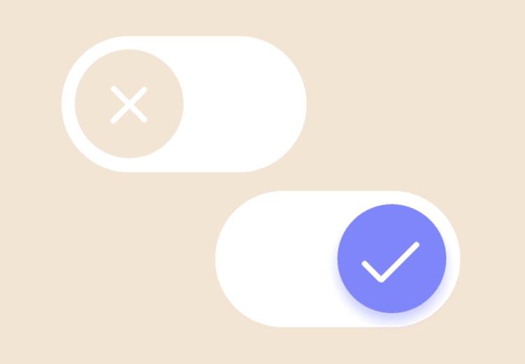 true or false toggle example