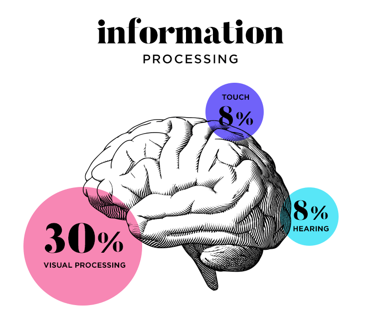 Visual storytelling - information processing in the human brain