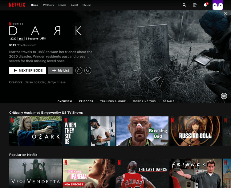 Bad UI design websites with good UX - Netflix