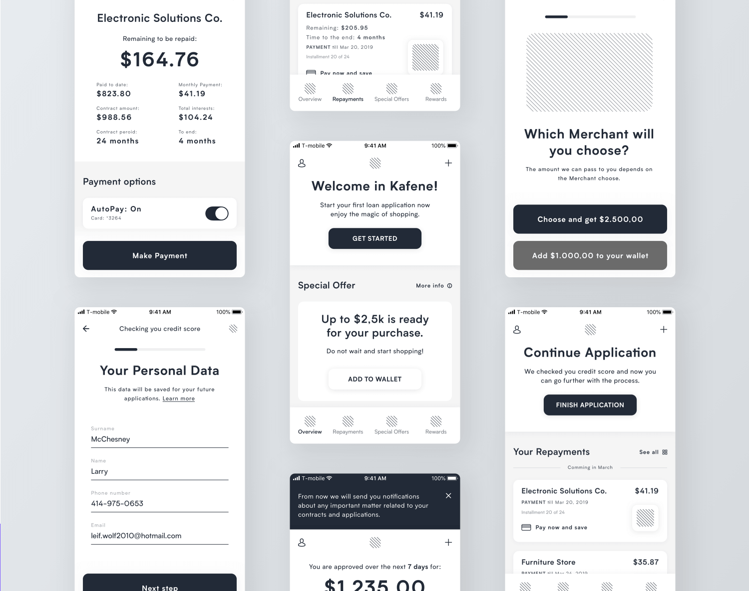 example of an app wireframe that is data-heavy