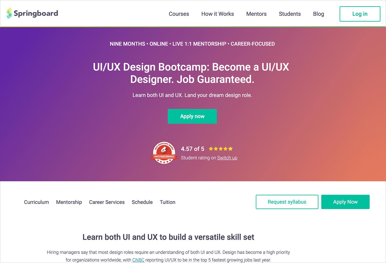Online UI/UX design course - Springboard